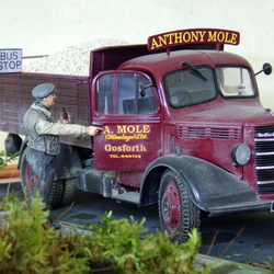Bedford OB tipper Anthony Mole